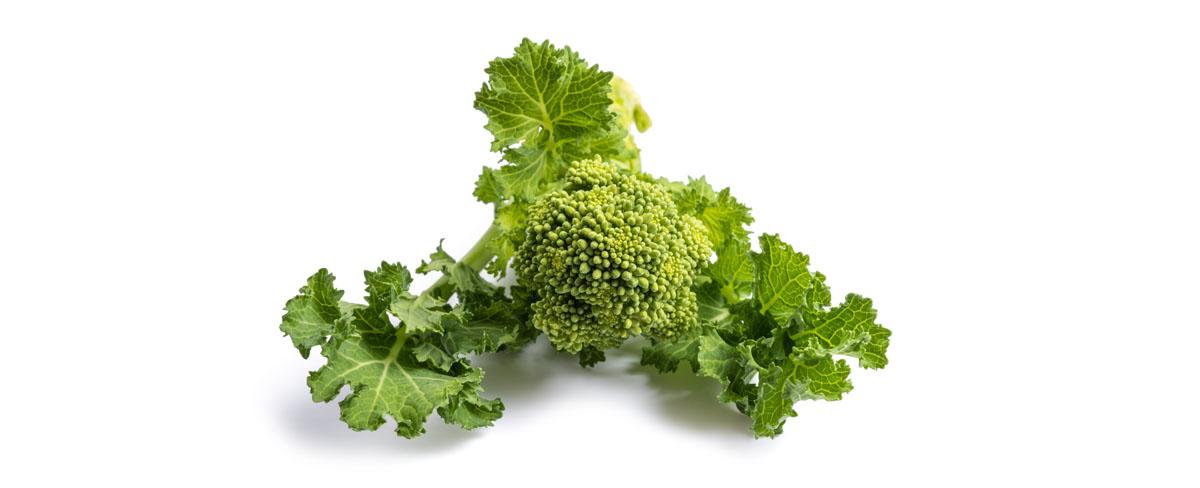 broccolo friariello